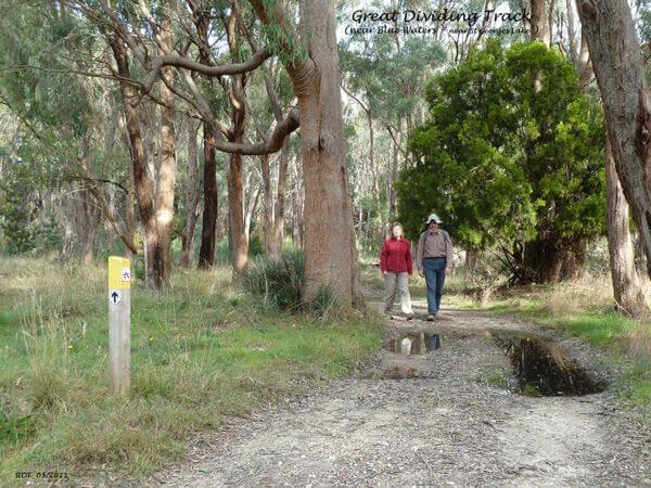 Walking 002 RDT - Great Dividing Trail