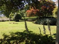 Hedgerow - Creswick Garden Lovers Weekend 2017