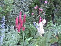 Noonameena - Creswick Garden Lovers Weekend 2017